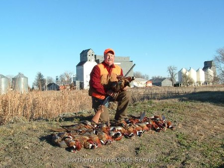 south dakota pheasant hunting outfitter