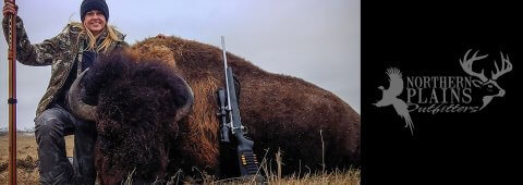 Trophy Buffalo Hunts